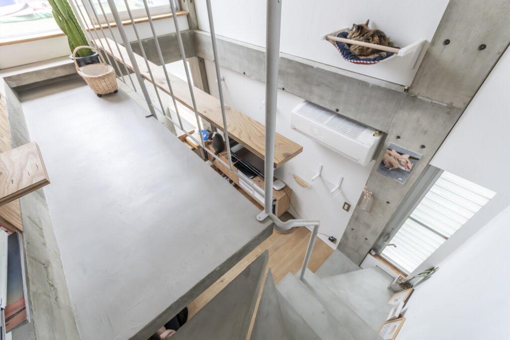 3階への階段の途中から見る。あられは手すりの外側に設けられたキャットウォークから自分の定位置へと飛び移る。