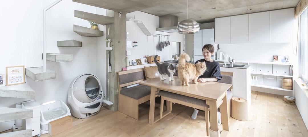 半減した敷地に建てた2世帯住宅 ネコと人間が心地よく 暮らすための工夫をこらす