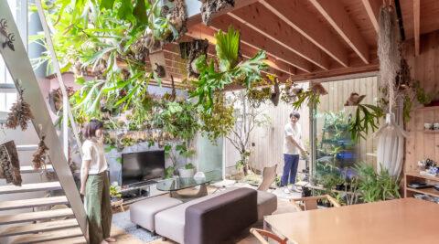多くの緑とともに暮らす飽きの来ない家 ゆるやかにつながる空間と大きな開口でのびのびと暮らす