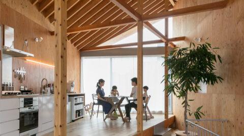 天井高5メートルの大開口斜めに架かった天井の棟木。シンプルかつ大胆なデザインの家