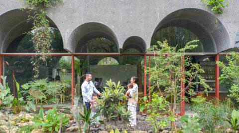 自然と向き合うヴォールト天井の家 植物や虫や動物たちと境界なく暮らす